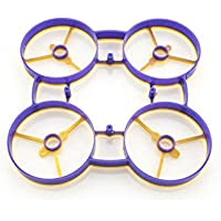 RaGG-e Whoop Frame- Yellow/Purple Color
