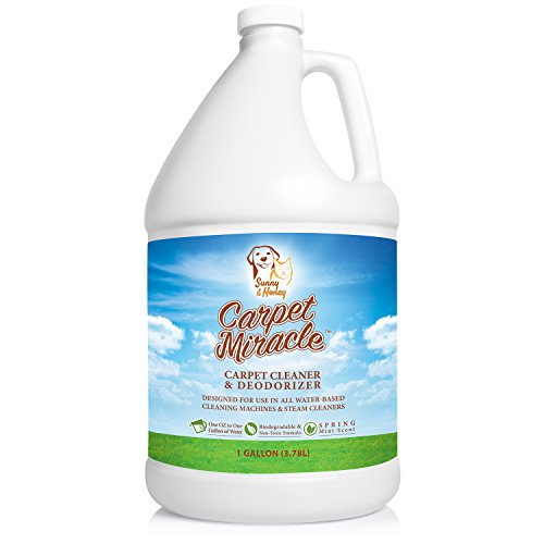 Carpet Cleaner And Deodorizer Solution For Hoover Bissell