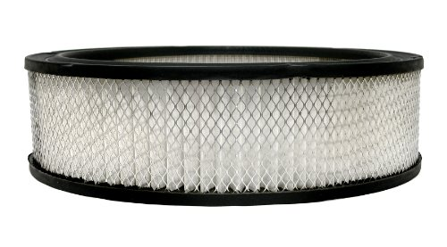 ACDelco A348C Professional Air Filter