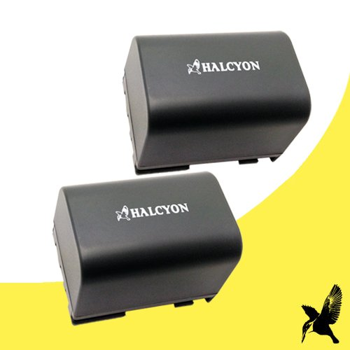 Two Halcyon 1300 mAH Lithium Ion Replacement Battery for Canon DC330 DVD Digital Camcorder and Canon BP-2L12