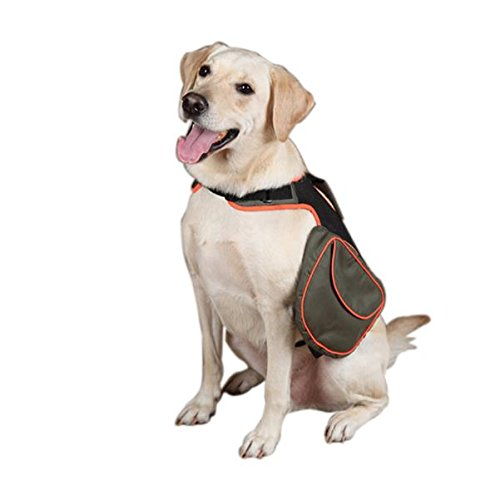 Guardian Gear Polyester Dog Back Pack, Large, Green