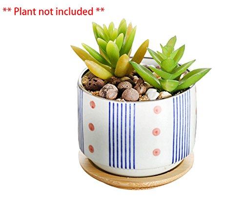 Japanese Ceramic Container - 6