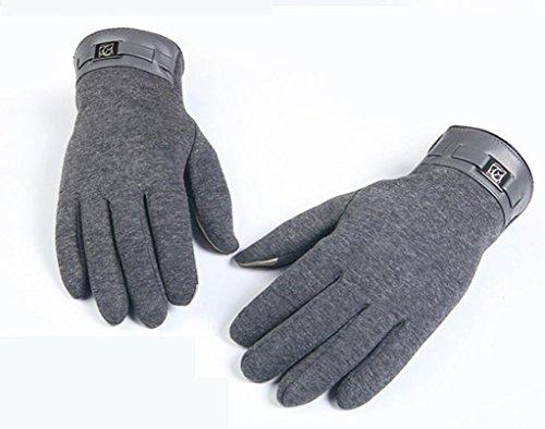 FAPIZI Winter Mens Full Finger Smartphone Touch Screen Cashmere Gloves Mittens (Gray)