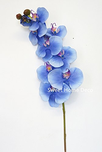 21' Phalaenopsis Orchid (Sweet Home Deco 38'' Large Phalaenopsis Orchid Latex Coated Real Touch Artificial Flower (Wedding/Party/Home Decorations))