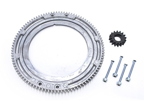 (Everest Brand Flywheel Ring Gear Replaces Briggs 399676 392134 696537)