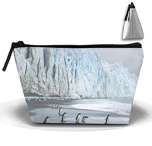Travel Toiletry Pouch Royal Penguins Coast Ocean Ice Makeup Organizer Clutch Bag with Zipper