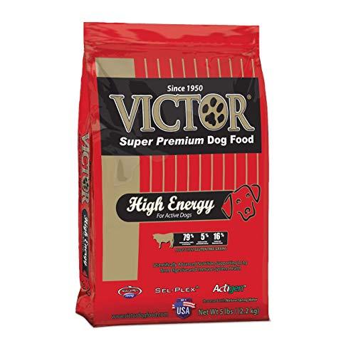 VICTOR High Energy Dry Dog Food, 5 lb. Bag