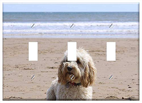 Switch Plate Triple Toggle - Beach Dog Ball Cockapoo Puppy Summer Sand Pet