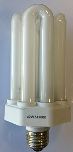 Compact Lamp 42w Fluorescent (42 W COMPACT FLUORESCENT LIGHT BULB)