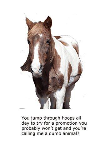 Blank Notecard - Horse - Dumb Animal