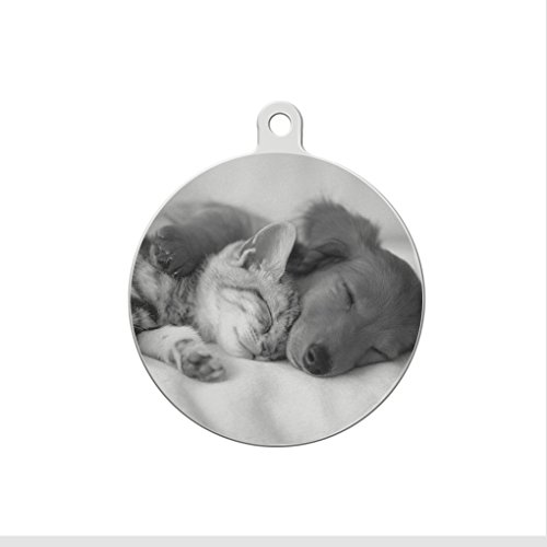 (Customized Photo & Text Pet ID Tag -- Personalized Stainless Steel Dog Cat Anti-Lost Engraved Plate Name Tag Charms for Collar, Necklace, Keychain, Round,25mm )