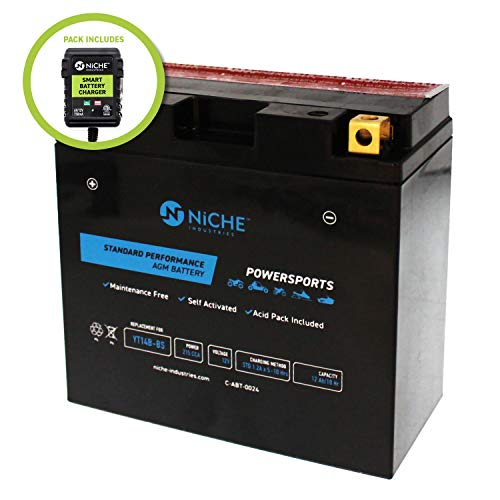NICHE AGM Replacement Battery for YT14B-BS with 12V 750mA Maintainer Charger | 215CCA, 12V, Self Activated | Motorcycle | For Hyosung & more