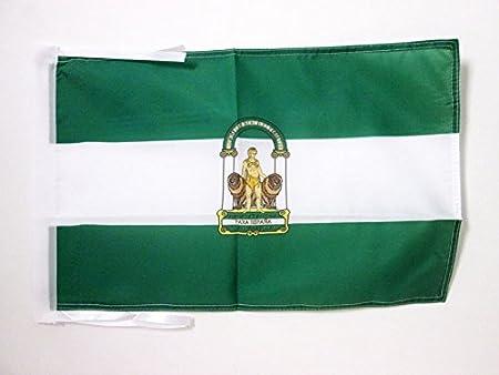 AZ FLAG Bandera de ANDALUCÍA 45x30cm - BANDERINA ANDALUZA 30 x 45 cm cordeles: Amazon.es: Hogar