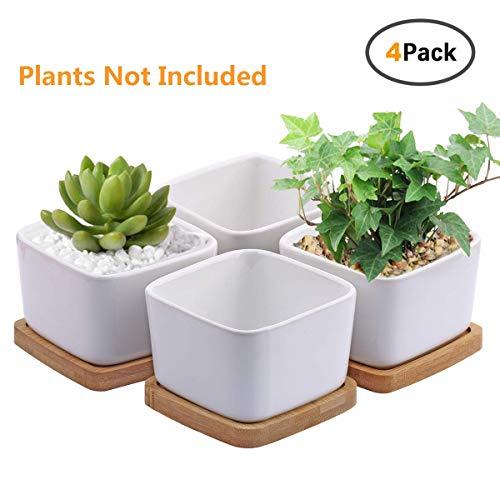 Succulent Plant Pots,OAMCEG 3.54 inch Square Design for Succulent/Cactus,Set of 4 White Ceramic Succulent Cactus Planter Pots with Bamboo Tray(Plants NOT Included)