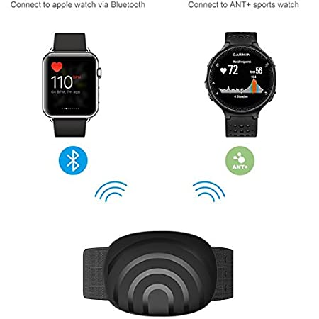 BerryKing Sportbeat Bluetooth & ANT+ para Garmin Polar Wahoo RUNTASTIC STRAVA ENDOMONDO TomTom Apple iPhone Android Arm Strap brazalete Heart Rate ...