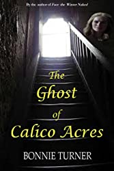 The Ghost of Calico Acres