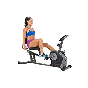 Sunny Health & Fitness Magnetic Recumbent Bike Exercise Bike, 350lbs High Weight Capacity, Monitor, Pulse Rate Monitoring SF RB4602