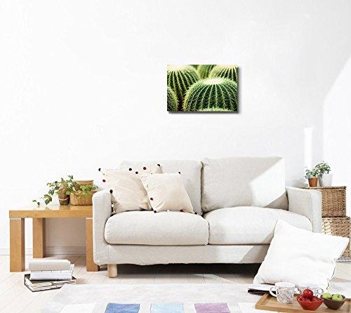 Closeup Photo of Cactus Wall Decor Wood Framed