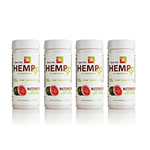 HEMPgo Organic Hemp Seed Oil and Vitamin Energy Shot, Watermelon, Daytime Formula 2 Fluid Ounce Bottles, 4 Pack