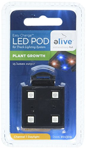 Led Lighting And Plant Growth