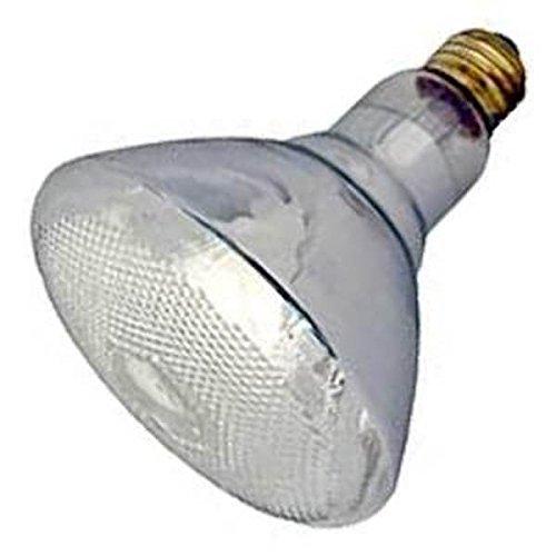 Damar 02629-100BR38FL/SS #02629A Reflector Flood Light Bulb