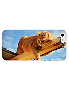 3d Full Wrap Case for iPhone 5/5s Animal Lazy Cat On The Lo