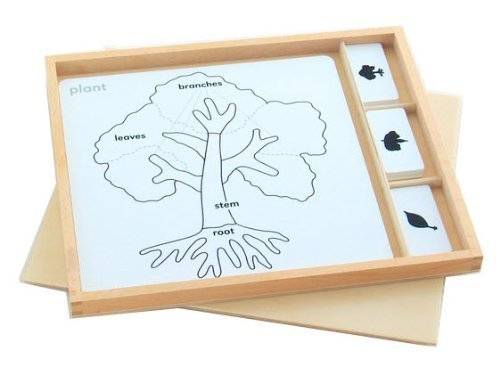 Montessori Botany Puzzle Activity Set