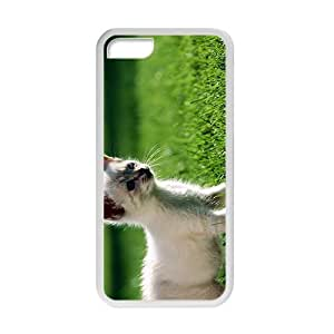 Cute Cat Kitten On Green Grass Field White Phone Case for Iphone 5C