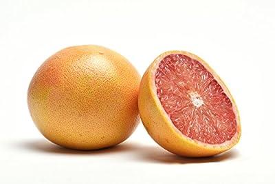 Fresh Florida Red Grapefruit by IMG Citrus