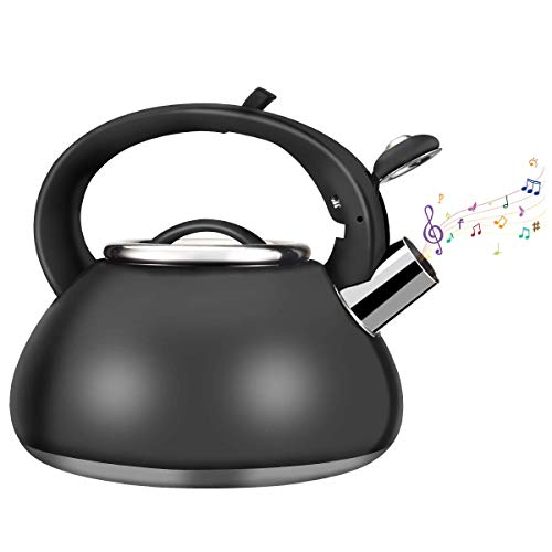 Whistling Stainless Steel Tea Kettle, Kinovation Food Grade Tea Pot with Heat-Proof Handle - Stovetop Suitable for All Heat Sources