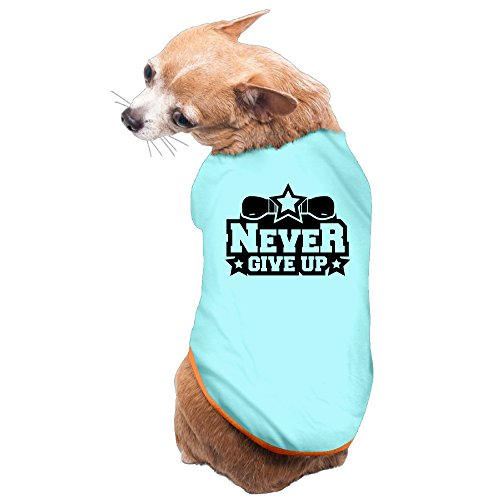Vgd Never Give Up Star Logo SkyBlue Cool Dog Clothes