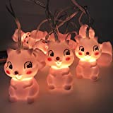 ZJCilected 4.9 ft 10 Lights Battery Powered Cute Animal LED String Lights for Indoor/Outdoor Halloween Christmas Thanksgiving Party Kids Bedroom Living-Room Dorm Decoration(Squirrel)