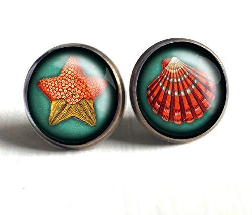 Starfish and Sea Shell Stud -