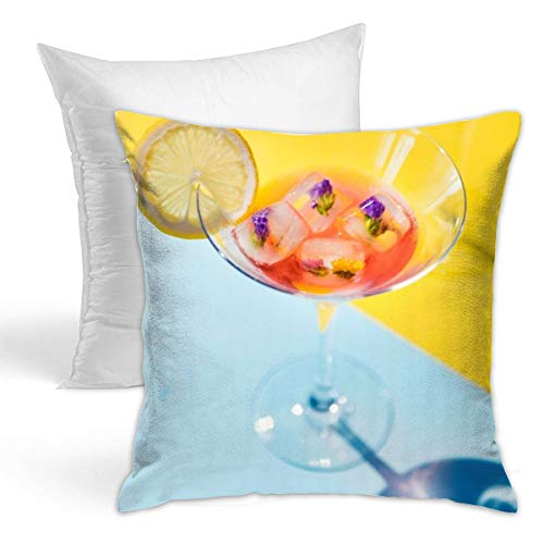 Osvbs Clear Glass Martini Glass with Ice Cubes Creative Home Double-Sided Printed Cushion Decorative Pillowcase with Pillow Invisible Zipper 16.5
