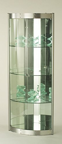 One Door Curio - Chintaly Imports Corner Curio Cabinet with Mirror Interior, Clear/Silver