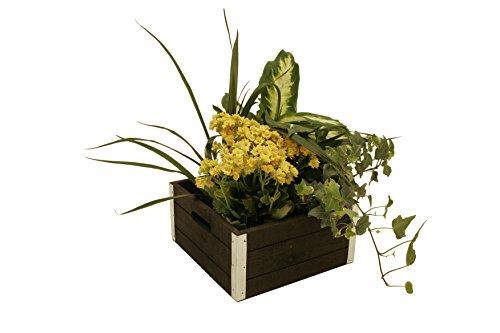 Wald Imports Graywash Wood  Decorative Crates, Set of 3