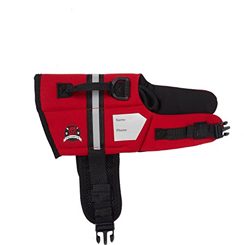 Paws Aboard Red Neoprene Life Jacket, Dog or Cat Life Preserver (XXSmall 2-6 Lbs) Review