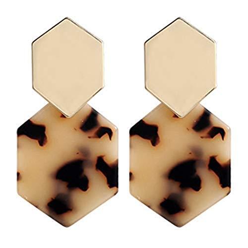 Artilady Acrylic Resin Hoop Earrings - Tortoise Shell Earrings for Women Boho Jewelry, Great for Sister, Friends, mom (Light Leopard) ()
