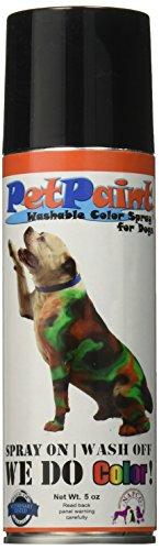 PetPaint Pet Hair Spray, 5-Ounce, Old Dog Orange]()