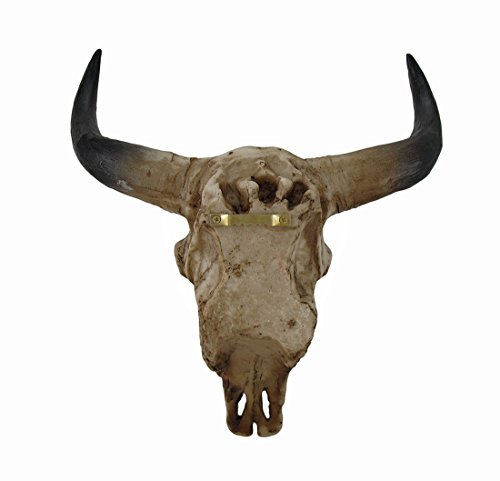 Southwestern Steer Skull Wall Sculpture