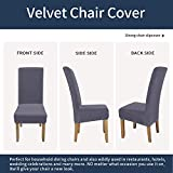 Colorxy Large Velvet Spandex Chair Covers for