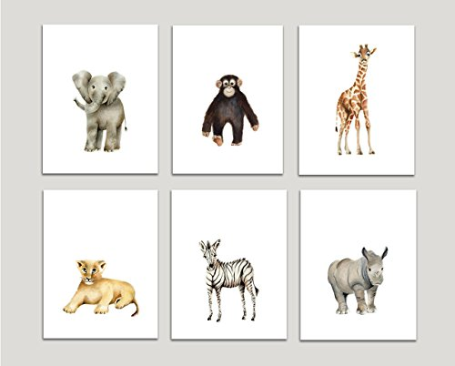 Safari Nursery Art Prints Set Of 6 Baby Animals Available In Various Sizes UNFRAMED PRINTS