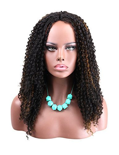 Search : Kalyss African American Women's Wig Invisible Lace Front Middle Parting Medium Long Jerry Curly Synthetic Hair Wigs for Black Women (Black& Brown)