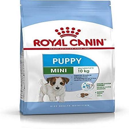 Royal Canin Mini Junior Cibo secco per cuccioli fino a 10 mesi 4 Kg