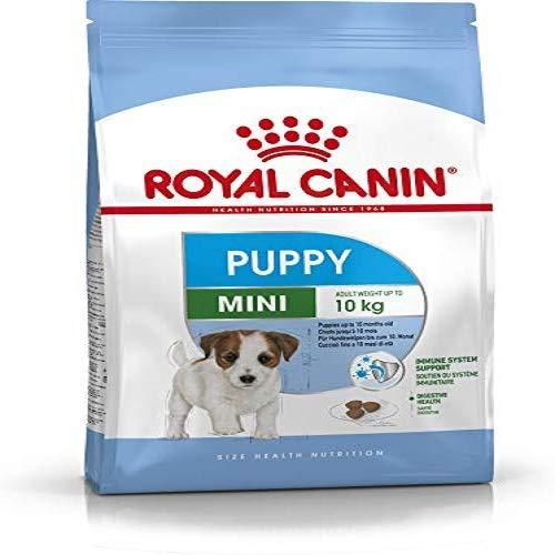 4 Kg Royal Canin Mini Junior Dry Dog Food 4 kg