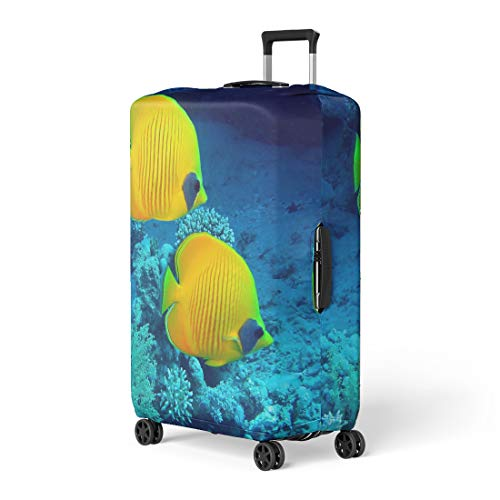 Pinbeam Luggage Cover Yellow Sea Masked Butterfly Fish Chaetodon Semilarvatus Red Travel Suitcase Cover Protector Baggage Case Fits 22-24 inches ()