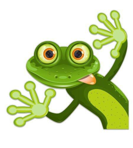 (Magnet Goofy Frog Face - Magnetic vinyl sticks to any metal fridge, car, signs 5