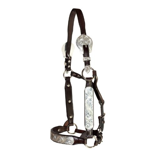 Tory Leather Rochester Congress Style Show Halter