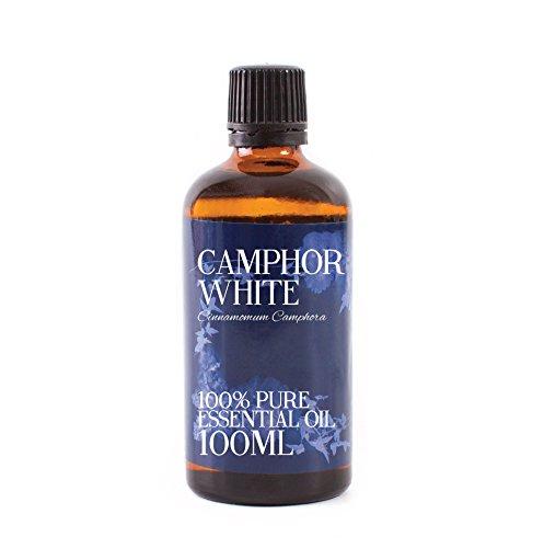 パラダイスメジャー支配的Mystic Moments | Camphor Essential Oil - 100ml - 100% Pure
