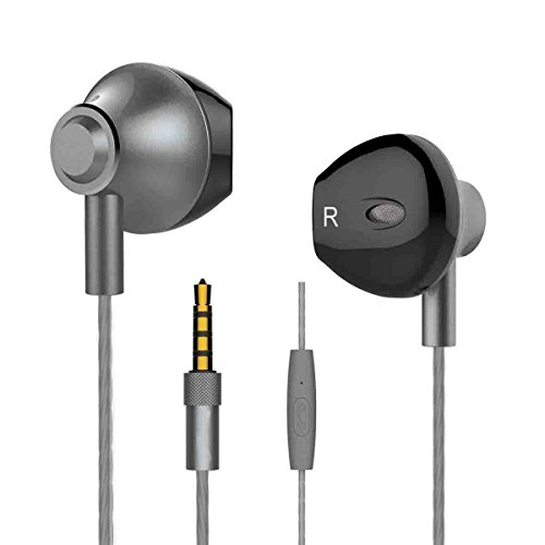 Langsdom M420 in Ear Headphone with Mic for Phones, MP3 Players, and Laptops (Titanium Grey)